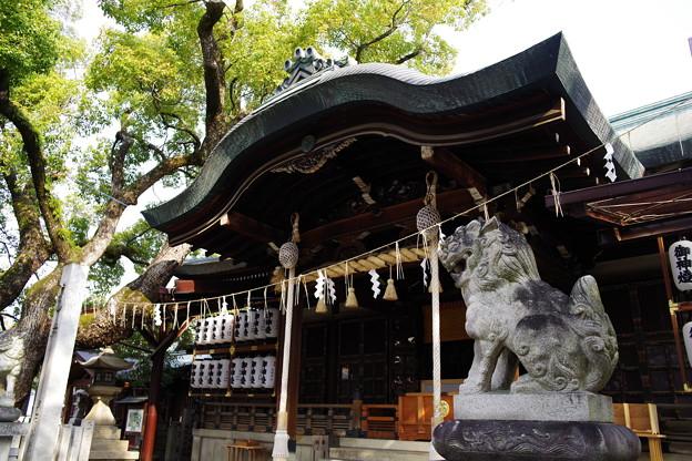 石切劔箭神社(石切神社) 本殿