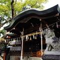 Photos: 石切劔箭神社(石切神社) 本殿