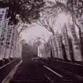 石切劔箭神社(石切神社) 上之宮