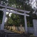 石切劔箭神社(石切神社) 上之宮 鳥居