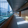 Photos: 4_東京国際フォーラム_012