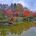 Photos: 桜山公園