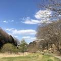 写真: 今日のS公園