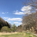 Photos: 今日のS公園