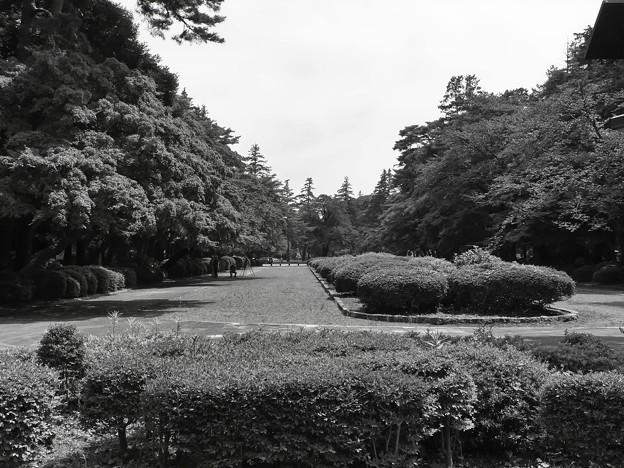 多磨霊園ー1
