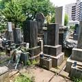 Photos: 森一族の墓