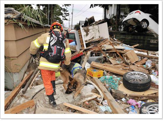 korean_rescue_team_02_5609295847_o