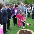 Photos: ireland_tree_planting_5761666286_o