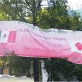 写真: mexico_fair02_5839097060_o