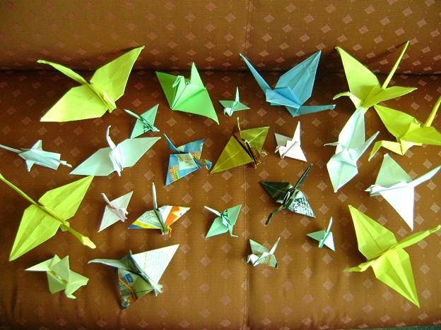 argentina_origami02_5678158511_o