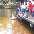 写真: brasil_salvador02_5679673870_o