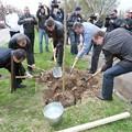 Photos: uzhgorod_ukraine_01_5634758620_o
