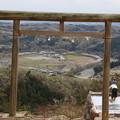 Photos: 山頂からの花見