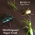 Photos: 紙の虫たち