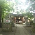Photos: 神社にひかり降る