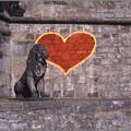 Photos: Red Heart