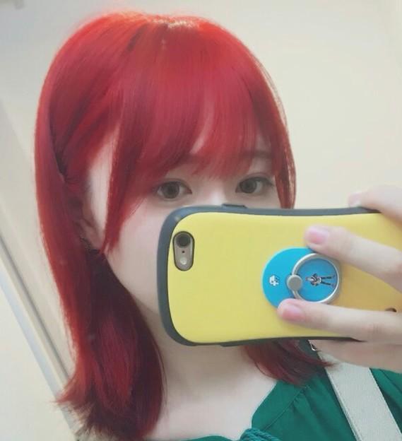 写真: 1号姫子⊂((*σ⊥σ*))⊃         韓国風?┌(┌^o^)┐