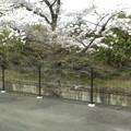 Photos: 阪急嵐山線の車窓24