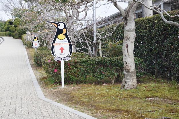 賢島駅の写真0091