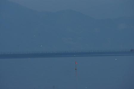 今津港の写真0013