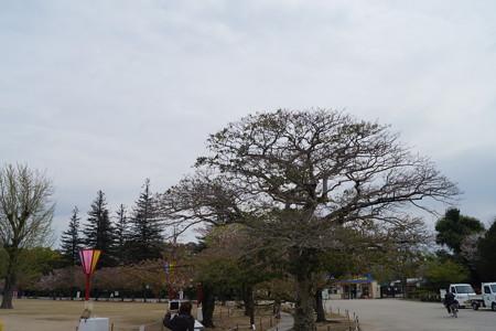 姫路城の写真0143