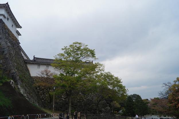 姫路城の写真0191