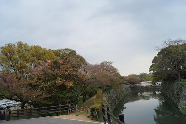 姫路城の写真0192