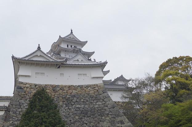 姫路城の写真0194