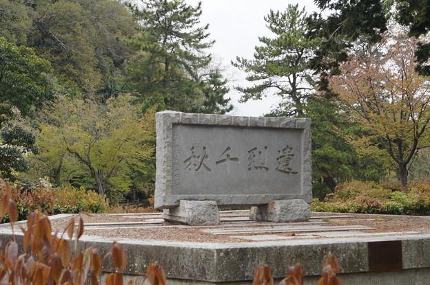 姫路城の写真0197