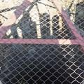 姫路城の写真0359