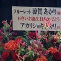 写真: 第25回大阪定例ライブ0556