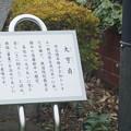 写真: 長浜鉄道スクエア0008