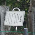 写真: 長浜鉄道スクエア0015