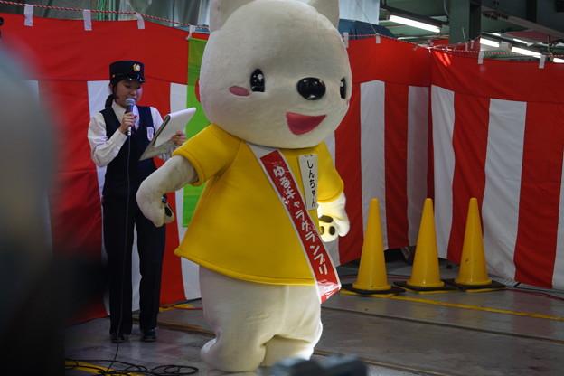 Photos: 神鉄トレインフェスティバル(2018)0080