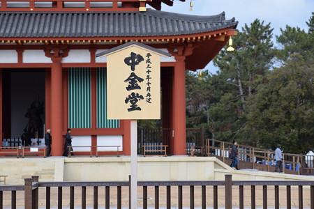 冬の奈良市内の写真0008