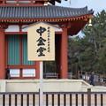 Photos: 冬の奈良市内の写真0008