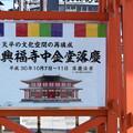 Photos: 冬の奈良市内の写真0018