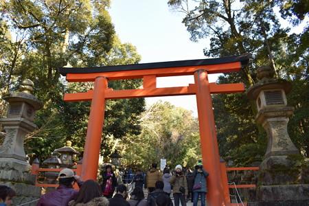冬の奈良市内の写真0038