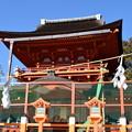 Photos: 冬の奈良市内の写真0043