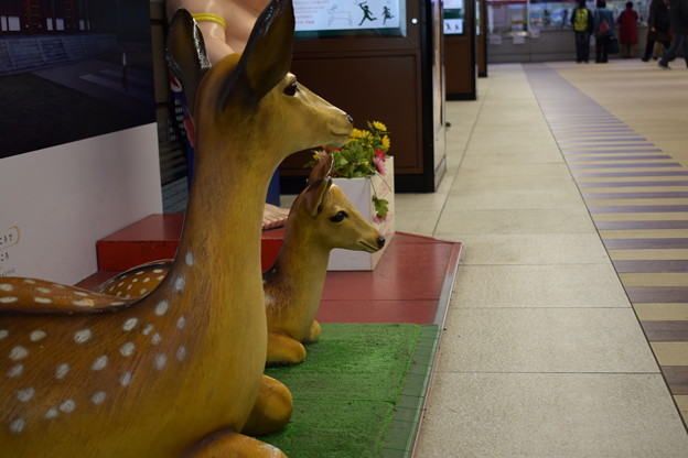 近鉄奈良駅の写真0003