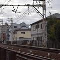 写真: 百舌鳥八幡駅周辺の写真0022