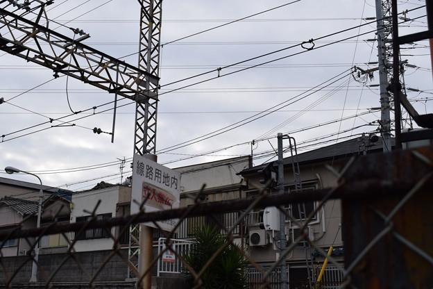 三国ヶ丘駅周辺の写真0027