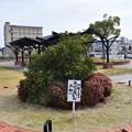 Photos: 福知山駅周辺の写真0025