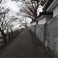Photos: 福知山城の写真0013
