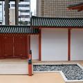 Photos: 京都駅前のバスロータリー0026