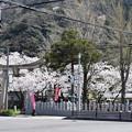 Photos: 敦賀市内の写真0187