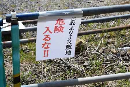 敦賀市内の写真0198