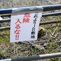 Photos: 敦賀市内の写真0198