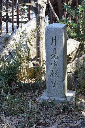 敦賀市内の写真0209