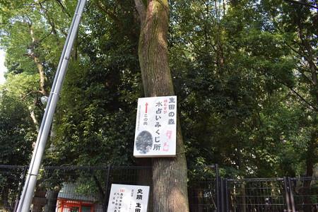 神戸市内の写真0026